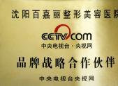 中央电视台央视网战略合作伙伴