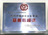 支持中国妇女公益事业慈善楷模奖