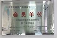 北京医疗整形美容协会