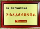 中国十佳优秀医疗美容机构