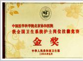 2008.05全国卫生系统护士岗位技能竞赛金奖