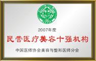 2007年度中国民营医疗美容