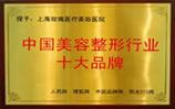 中国美容整形行业十大品牌