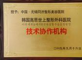 韩国高恩世上整形外科医院技术协作机构
