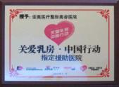 关爱乳房·中国行动