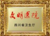 四川省文明医院