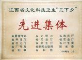 """省委宣传部授予""""三下乡""""先进集体称号"""