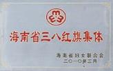 海南省三八红旗集体