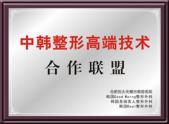中韩整形高端技术合作联盟