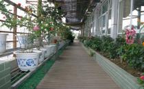 武汉华亚整形医院空中花园长廊走道