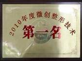 2010年度微创整形技术名