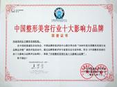 中国整形美容行业十大影响力单位