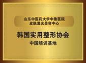 韩国实用整形协会中国培训基地