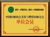 中国医师协会美容与整形医师分会单位会员