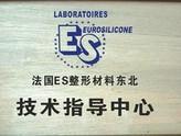 法国es整形材料东北技术指导中心