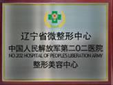 沈阳二零二打造辽宁省唯一微整形中心
