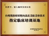 台湾黑脸娃娃美容技术培训基地