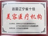 首届辽宁省十佳美容医疗机构