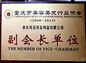 行业协会副会长单位