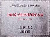 上海市社会医疗机构特色专病