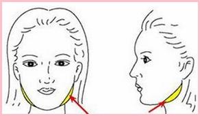 瘦脸针注射部位