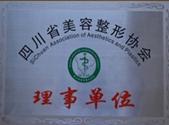 四川省美容整形协会理事单位