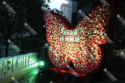 上海玫瑰医疗美容医院门口蝴蝶