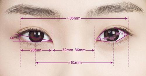 标准双眼皮距离