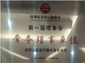 第一届理事会常务理事单位