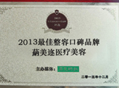 2013最佳整形口碑品牌