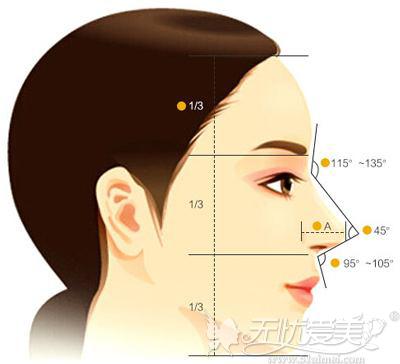 综合隆鼻的面部参考角度