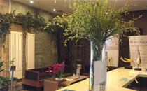 北京泰美丽格医疗美容前台