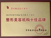 2013年年度中国消费者最爱的十佳品牌