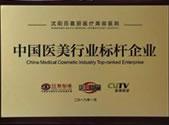 中国医美行业标杆企业