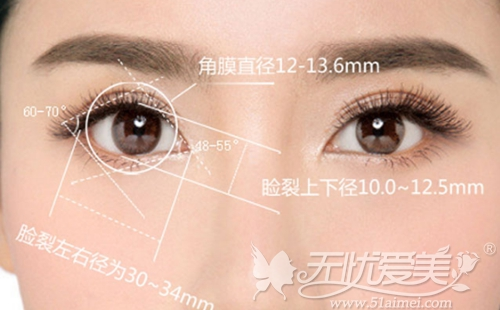 江门华美双眼皮手术美学标准
