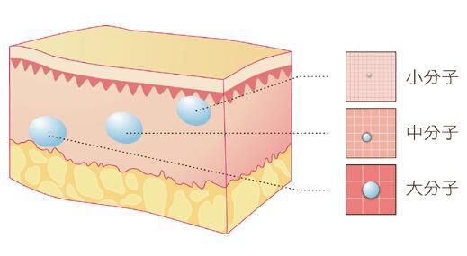 海薇M+加强型长效玻尿酸