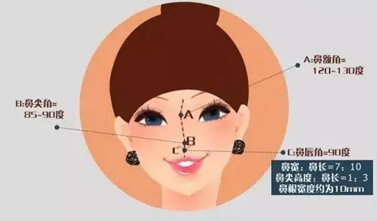 现代对美鼻的数据