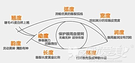 南京维多利亚无痕双眼皮美学标准