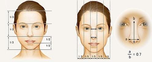 温州丝芙兰隆鼻手术美学标准
