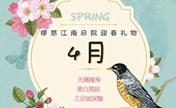 韩国缪慈整形医院4月樱花雨季特惠 芭比线雕隆鼻仅需4000元