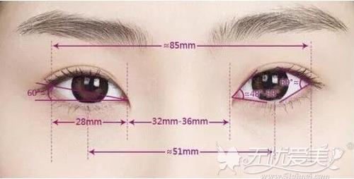 眼部审美标准