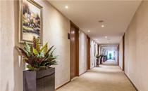 杭州艺星病房走廊