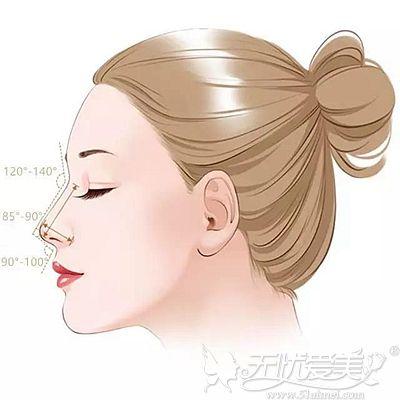 鼻部整形设计的黄金比例