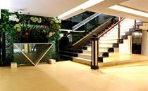 广州星团整形走廊