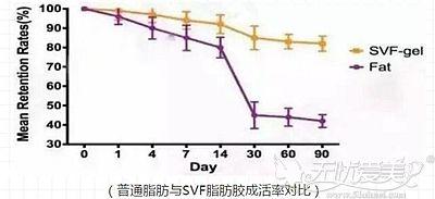 脂肪胶的成活率要比普通脂肪高