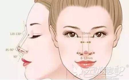 鼻综合手术的美学设计