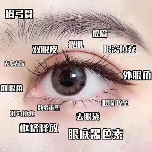 眼部综合可以做的项目