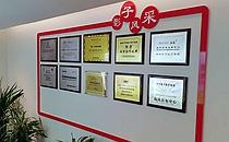 开封影子整形荣誉证书