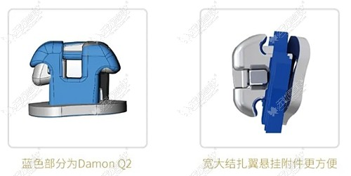 damonq2自锁托槽的价格